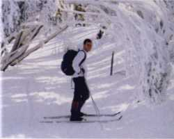 Cross country skiing in Baw Baw National Park